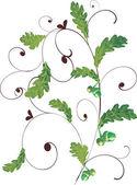 Groene eiken gebladerte decoratie — Stockvector