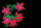Vijf rode orchideebloemen — Stockvector