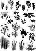 Black on white plants collection — Stock Vector