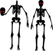 Two skeletons — Stock Vector