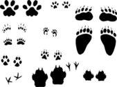 Different animals tracks set — Stock Vector