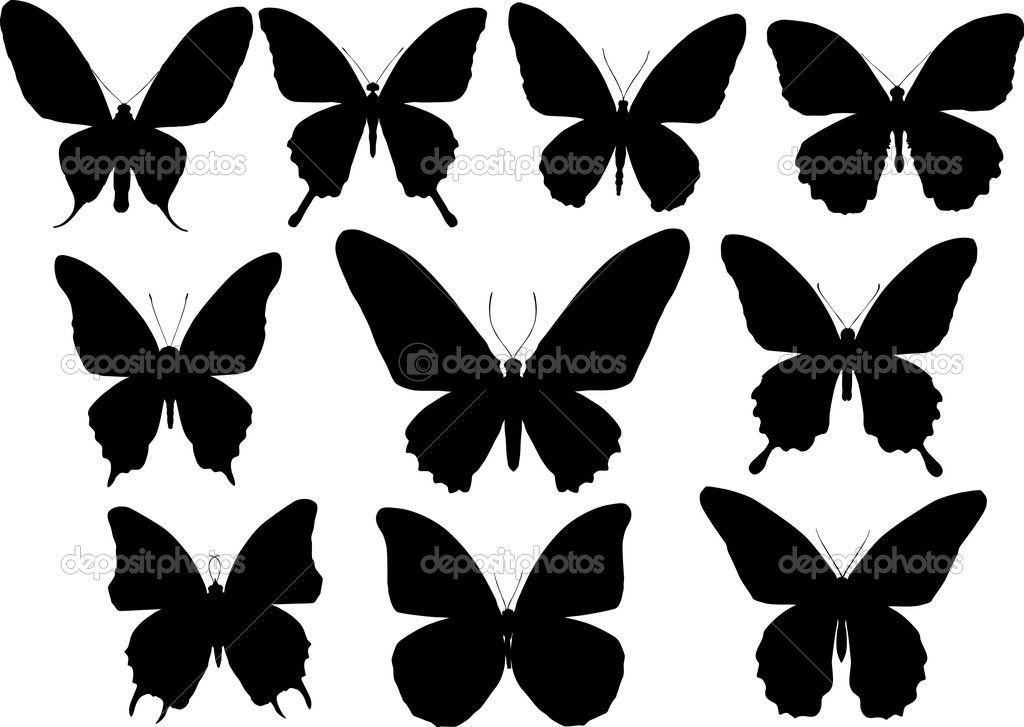 Illustration with butterfly silhouettes collection isolated on white background — Stock Vector #6260741