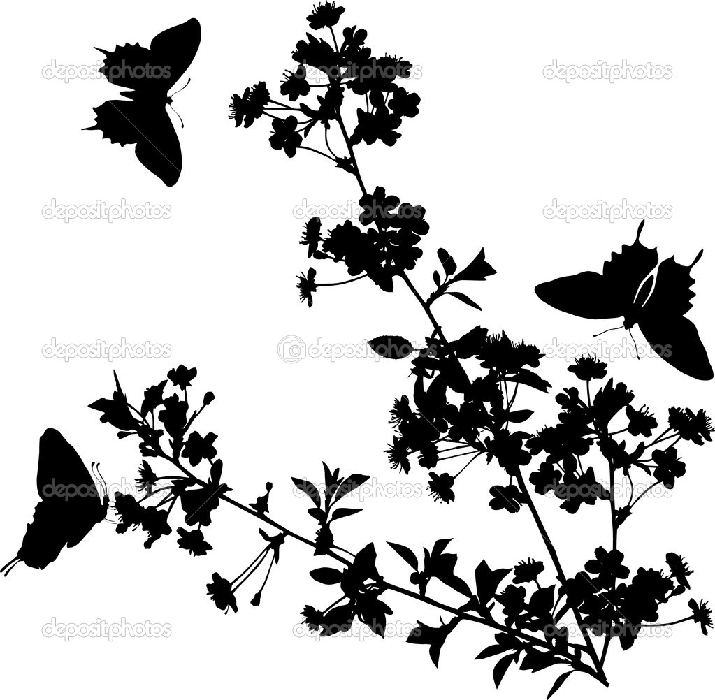 Stock Vector Dr Pas 6261329: Cherry Tree Flowers And Butterflies Silhouette
