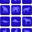 Twelve animal icons — Stock Vector