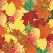 Bright fall foliage background — Stock Vector