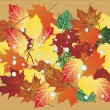 Fall foliage background with drops — Stock Vector