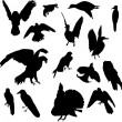 Fifteen birds — Vector de stock