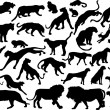 Thirty three Felidae silhouettes — Stock Vector