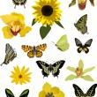 Yellow butterflies and flowers collection — Stock Vector