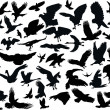 Fifty four bird silhouettes — Stock Vector #6327855