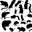 Twanty one rodent silhouettes — Stockvectorbeeld