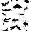 Set of seventeen insects — Stock Vector
