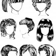 Vector de stock : Eight womhairstyles