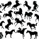 Twenty horse silhouettes — Stock Vector