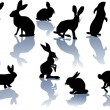 Rabbit silhouettes with reflections — Stock Vector