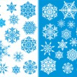Two color snowflakes collection — Stock Vector