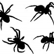 Four black spiders — Stock Vector