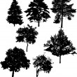Seven tree silhouettes — Stock Vector
