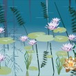 Water lily landscape — Stock Vector