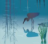 Heron in pond — Stock Vector