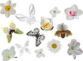 光の蝶と花のセット — ストックベクタ
