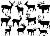 Twelve isolated deers — Stock Vector