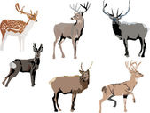 Six color deers — Stock Vector