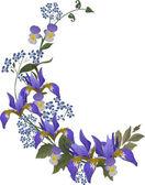Blue iris flower curl — Stock Vector