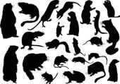 Twanty one rodent silhouettes — Stock Vector
