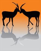 Yansıması ile iki keçi — Stok Vektör