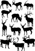 Twelve horned animal silhouettes — Stock Vector