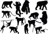 Fifteen monkey silhouettes — Stock Vector