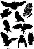 Nine owl silhouettes — Stock Vector