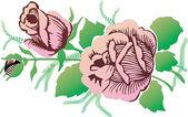 Pink roses on white illustration — Stock Vector