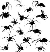Eighteen spider silhouettes — Stock Vector