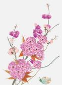 Roze kersenboom bloemen op licht blauw — Stockvector