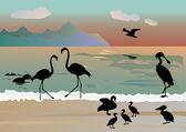 Coastline and bird silhouettes — Stock Vector