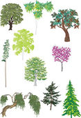 Set of green trees — Stock Vector
