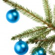 Christmas tree branch with blue decoration — Stockfoto