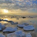 Ice on sea seaboard — Stock Photo