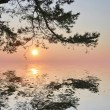 Sunset with pine and reflection — Stock Photo #6415492