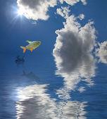 Jumping fish under sun — Stock Photo