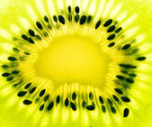 Macro photo of green kiwi — Stock Photo