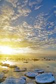 Bright winter sea sunset — Stock Photo