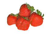 Group of red strawberries — Stock Photo