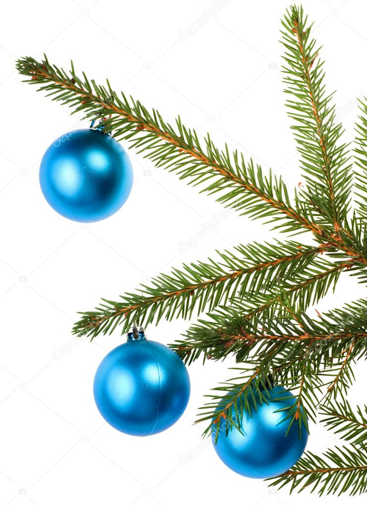 Christmas tree branch with blue decoration isolated on white background — Stock Photo #6414810