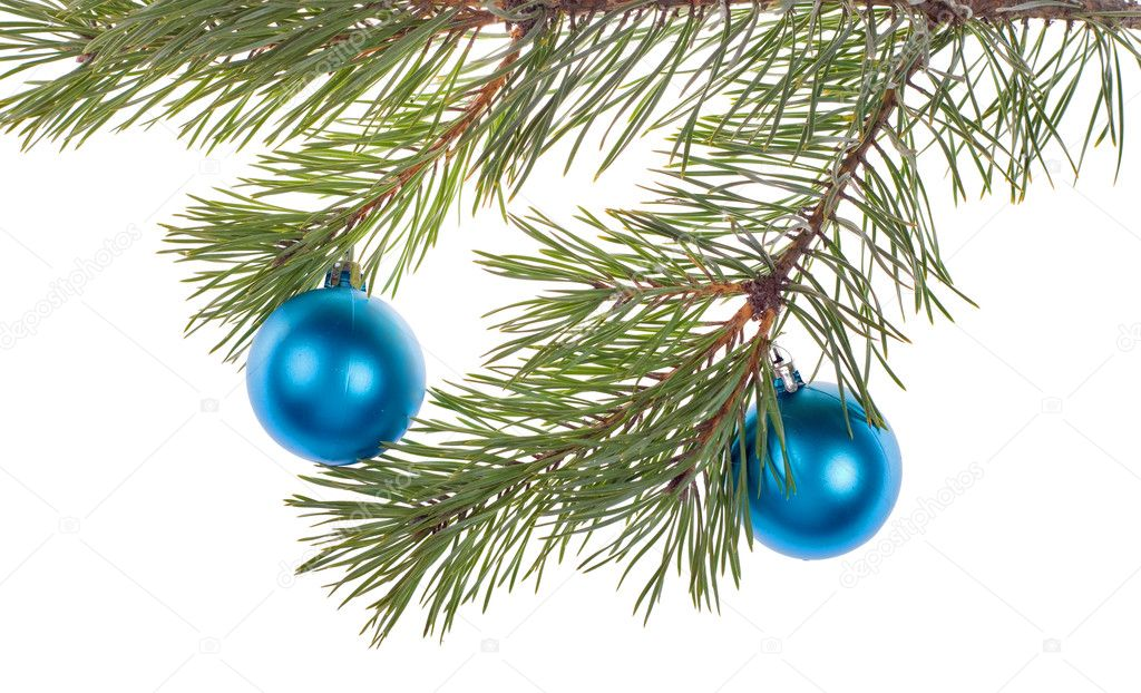 Christmas tree branch with blue decoration isolated on white background — Stock Photo #6414825