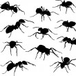 Eleven black ants — Stock Vector #6415625