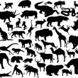Huge set of animals - Stock Vector