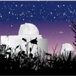 Постер, плакат: Astronomy observatory at nigth